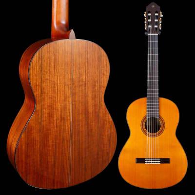 Yamaha CG162C Classical Guitar - Cedar Top for sale