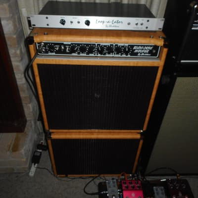 Bludotone Ripper Combo w/matching Closed back cab EV speakers Cork cover and Loopalator w/road cases for sale