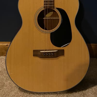 Blueridge BR-40T with Gig Bag - Pro Set Up by Luthier