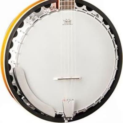 Washburn B10 5-String Mahogany Banjo, Authorized Dealer, Free Shipping for sale