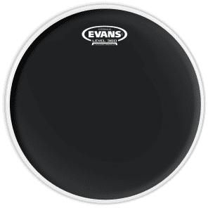 """Evans 12"""" Hydraulic Black"""