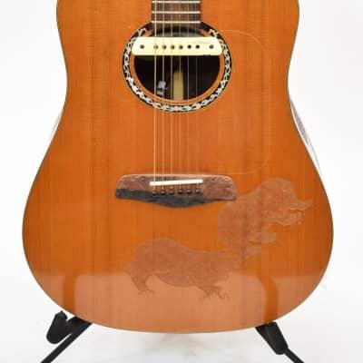 Blueberry Custom Made Acoustic Guitar w/ Original Case for sale