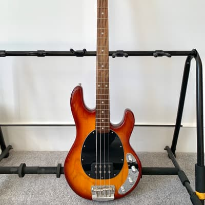 Sterling RAY34 4 String Bass in Honey Burst for sale