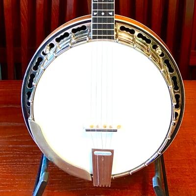 Ode Style C  Professional Walnut Bluegrass Banjo  Walnut for sale