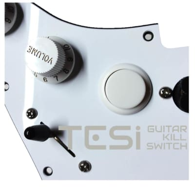 Tesi DITO 24MM Momentary Arcade Push Button Guitar Kill Switch Solid White