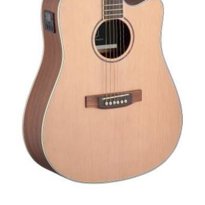 J.N GUITARS Asyla series 4/4 dreadnought acoustic-electric guitar with solid spruce top ASY-DCE for sale