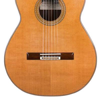 Dominique Delarue 2008 Classical Guitar Cedar/Indian Rosewood for sale