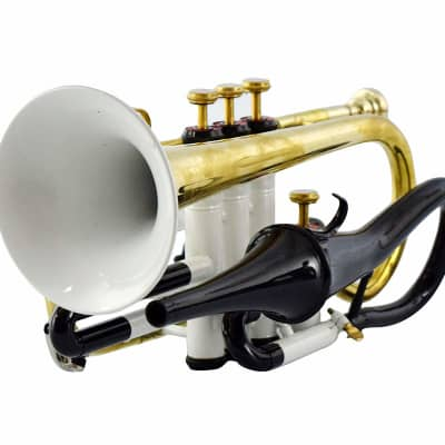sai musicals WHITE COLOR ECHO CORNET Bb PITCH FOR SALE WITH FREE HARD CASE AND MOUTHPIECE 2020 white