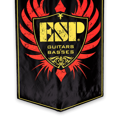 ESP Logo Shield Banner