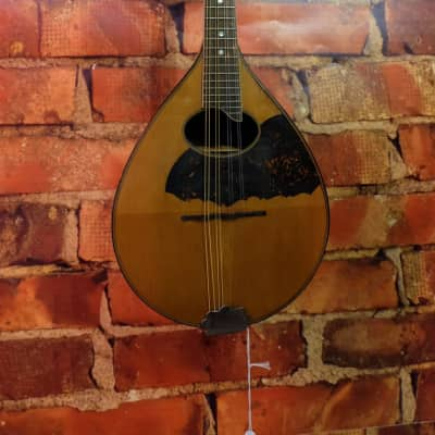Regal Flat Back mandolin circa 1925 for sale