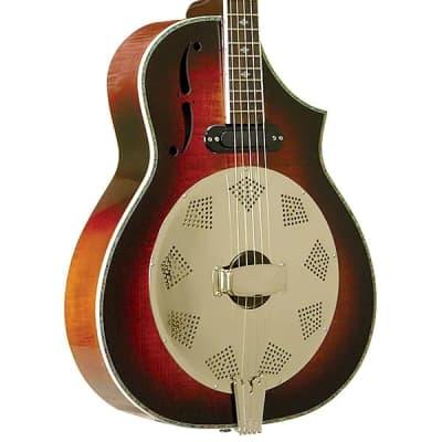 Gold Tone DOJO DLX Acoustic Body Deluxe Resonator 5-String Banjo with Gig Bag & Pickup