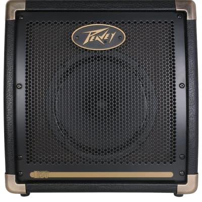 Peavey Ecoustic 20 Acoustic Amplifier for sale