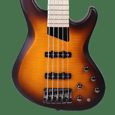MTD Saratoga Deluxe 5 String Deep Cherry Burst