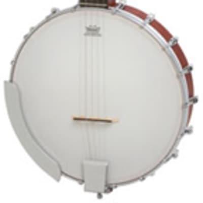 Epiphone MB100 5 String Banjo Natural for sale