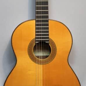 Eduardo Valdivia Konzertgitarre for sale