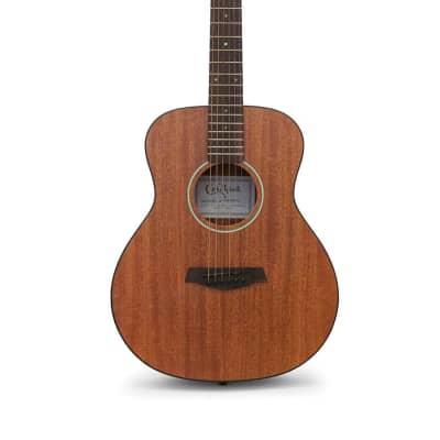 Samson Carlo Robelli Travel Acoustic Guitar with Gig Bag - CRP304MLX for sale