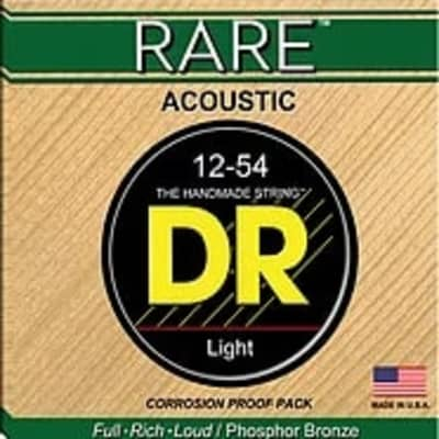 DR RPL-1012 Rare 12 String Acoustic Set