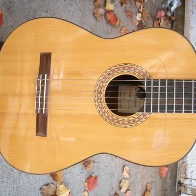 D Rod Hippner  Excelsalat # 178 Classical Guitar 1998 Natural for sale