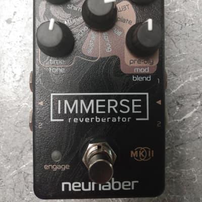 Neunaber Audio Immerse Reverberator V2 2019