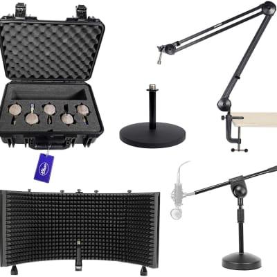 Blue Microphones 5 Capsule Kit (B1, B2, B3, B4, And B5) 988-000023