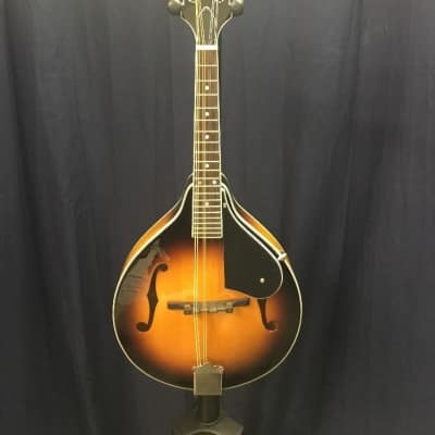 Washburn M1K mandolin Pak W/Bag/tuner for sale
