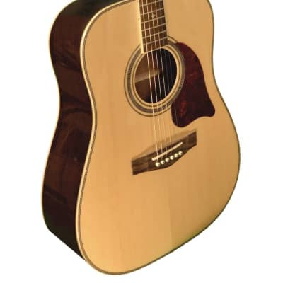 Revival  RG-24 Dreadnought Glossy Solid Spruce Top Rosewood Back & Sides 6-String Acoustic Guitar for sale