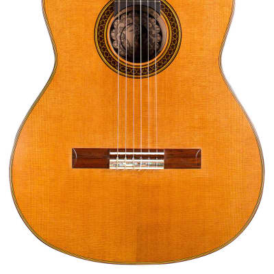David Daily 2007 Classical Guitar Cedar/CSA Rosewood for sale