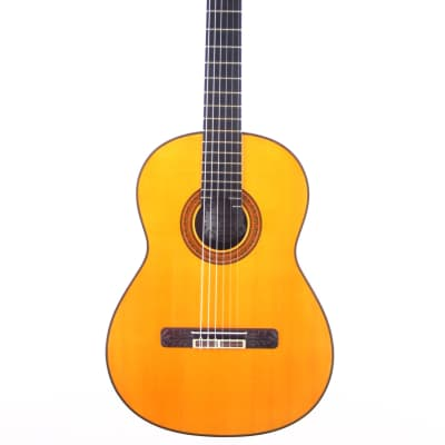 Jeronimo Pena 2010 Andres Segovia special in Re-Mayor - classical guitar for highest demands + Video for sale