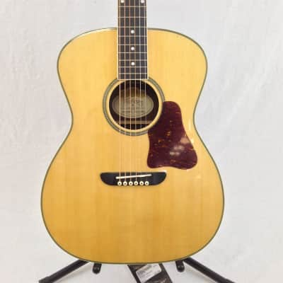 Washburn WSD5240SK Acoustic Guitar image