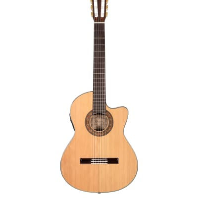 New Alvarez Yairi CY75CE Classical Cutaway - Free shipping! for sale