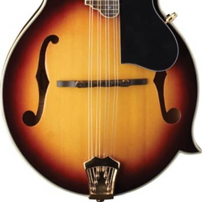 Washburn M3SWK Bluegrass Series F Style Mandolin w/ Free Case Free Shipping, Authorized Dealer for sale