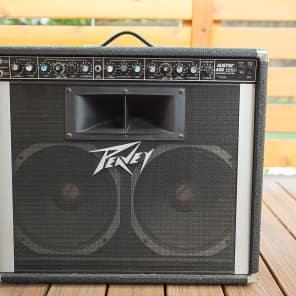 Peavey Austin 400 210-Watt 2x12 Acoustic Electric Instrument System