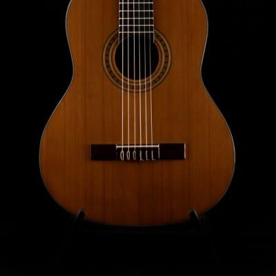Kirkland Klassische Gitarre for sale