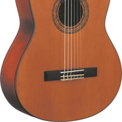 Oscar Schmidt OC9 Classical Guitar for sale