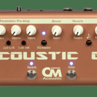 Carl Martin Acoustic GiG 2020
