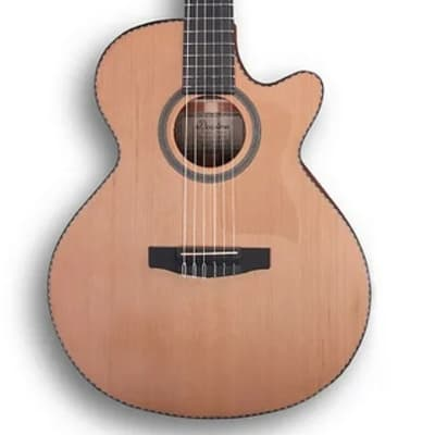 Dowina Rustica CLEC Hybryd Electro-Acoustic Guitar + Bag Best Price! for sale
