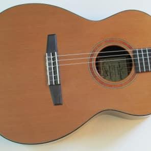 2004 Goodall Crossover Nylon String Cedar/Rosewood OHSC for sale