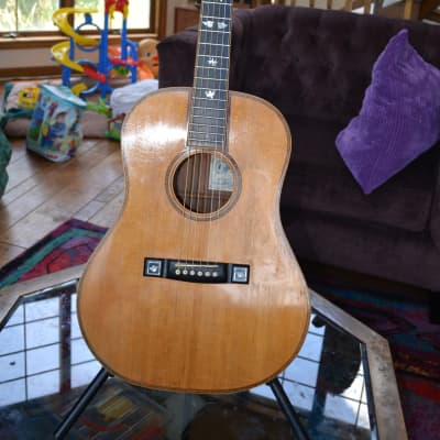 David Daily Acoustic Steel String for sale