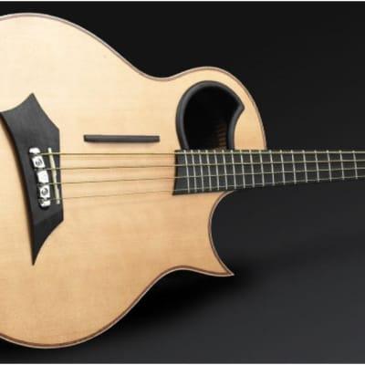 Warwick 1374909000CFOVSMWW Alien Mahogany Neck Wenge fingerboa4-String Acoustic-Electric Bass Guitar