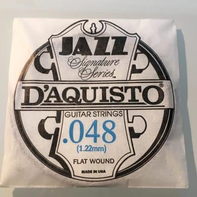 "D'Aquisto RARE Jazz Signature Series String .048"" Flatwound"