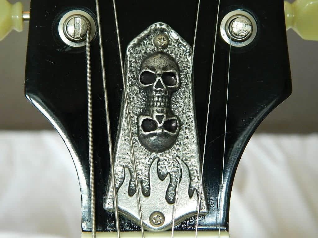 Skull Truss Rod Cover Plate Fits Gibson Les Paul Amp Sg Reverb
