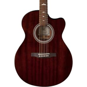 Paul Reed Smith SE Angelus A10E Acoustic/Electric Guitar — Tortoise Shell