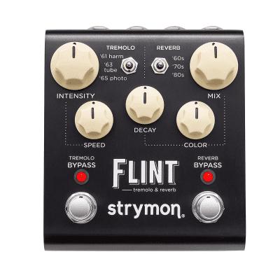 Strymon Flint Tremolo and Reverb