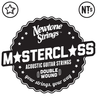 Newtone Master Class Series Acoustic Double Wound Strings 12-54