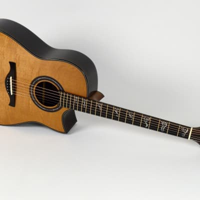 Pellerin Dreadnought CW Presentation Indian Rosewood / Torrefied Bearclaw Sitka Spruce 2020 w/OHSC for sale