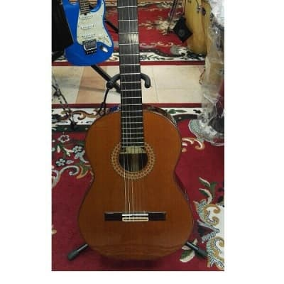 Chitarra classica spagnola di liuteria Manuel Rodriguez e Hijos model D ( Usata for sale