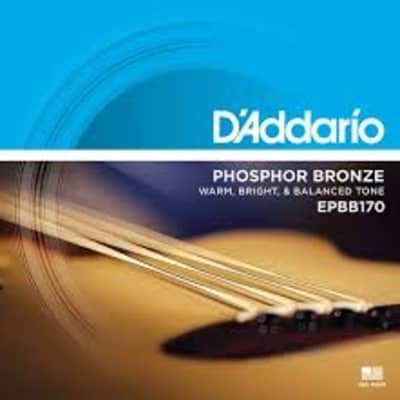 D'Addario EPBB170 Acoustic Bass Strings, Phosphor Bronze .045-.100