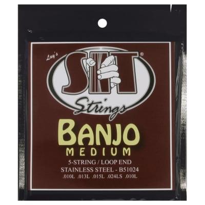 SIT Strings B51024 Medium 5-String Banjo Stainless Steel Strings