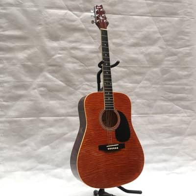 Montana CC10 Dreadnought acoustic guitar for sale