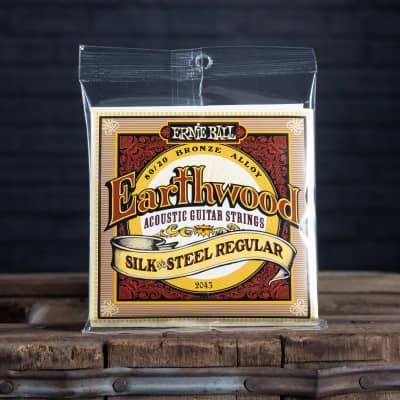 Ernie Ball Earthwood Silk and Steel Regular 13-56